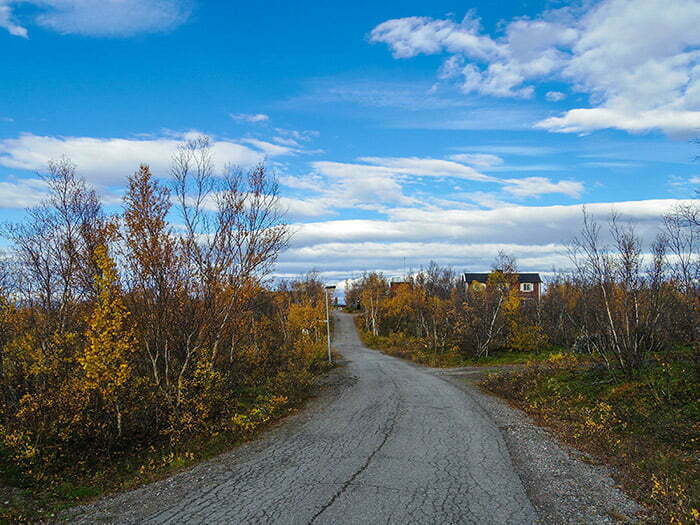 Abisko Scientific Research Station'a ait binalara giden yol
