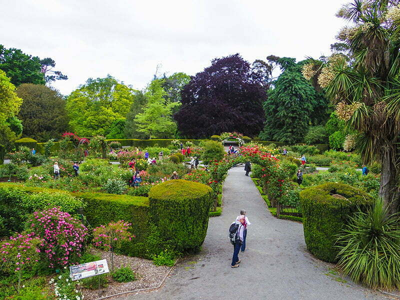 Gul bahcesi - Christchurch Botanik Bahceleri