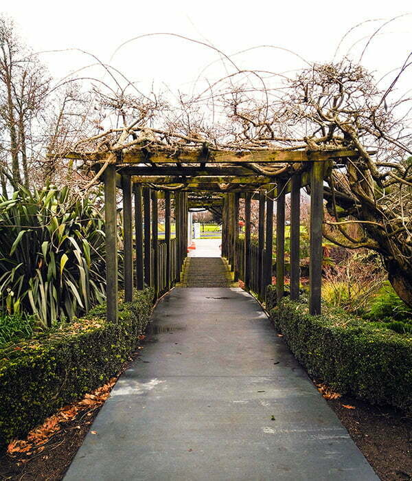 rotorua-kuirau-park-giris
