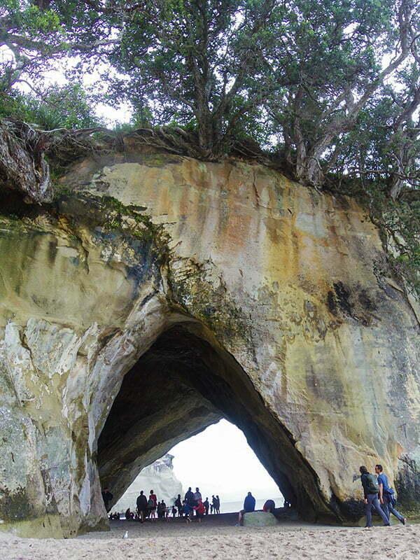 katedral-koyu-coromandel-yarimadasi-3