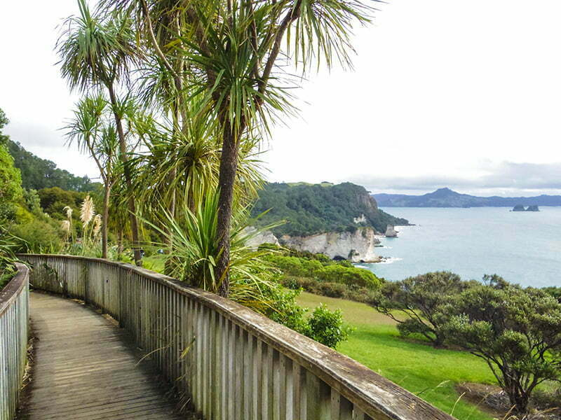 cathedral-cove-coromandel-3