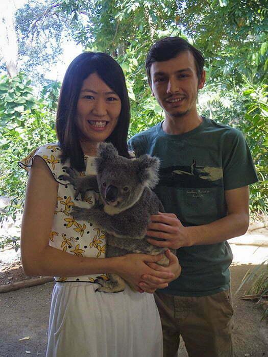 gold-coast-koala-fotograf