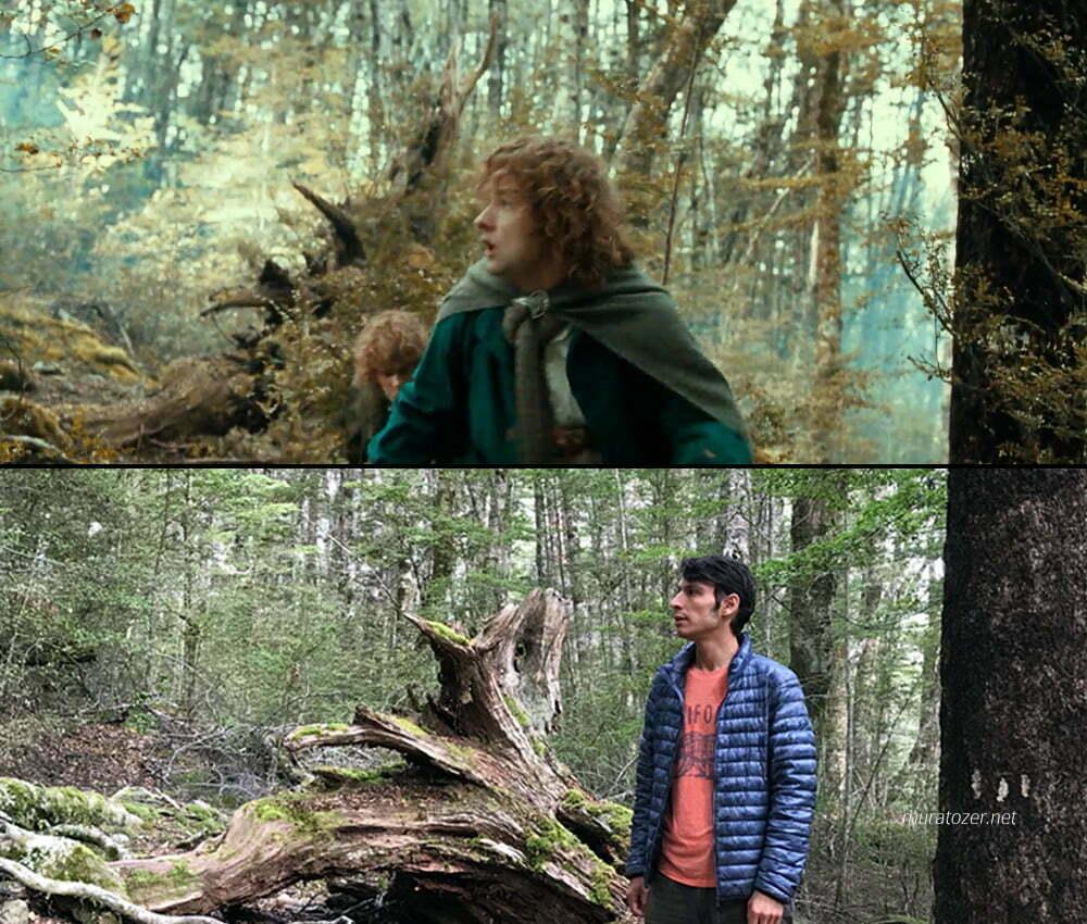 Merry ve Pippin orkların dikkatini kendilerine çekerken.