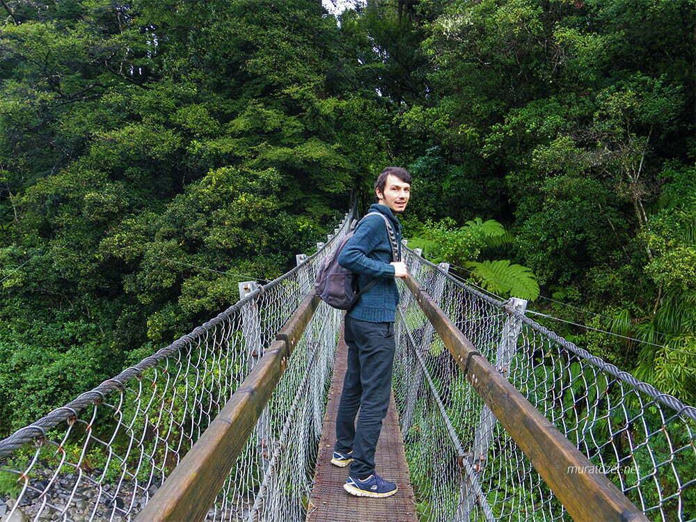 Kaitoke Regional Park içindeki asma köprü.