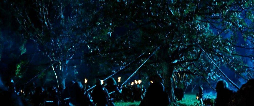 Isengardda kesilen ağaçlar.
